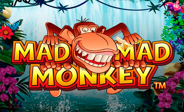 Money Mad Monkey™ Slot Machine Game to Play Free in Microgamings Online Casinos